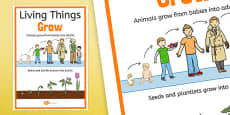 Living Things Grow Display Poster