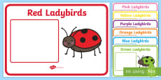 Ladybird Themed Group and Table Signs