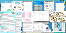 KS1 Under the Sea Lesson Plan Ideas and Resource Pack
