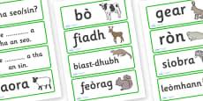 Animal Word Cards Scottish Gaelic