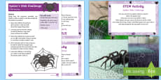 Spiders Web STEM Activity and Prompt Card Pack