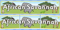 African Savannah Display Banner