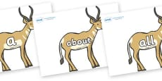 100 High Frequency Words on Antelopes