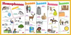 Homophones Posters