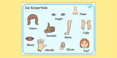 Parts of the Body Word Mat German