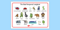 Word Mat to Support Teaching on The Bad Tempered Ladybird