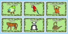 Editable Group Signs (Jungle & Rainforest)