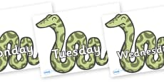 Days of the Week on Snakes