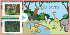 Jungle Facts PowerPoint
