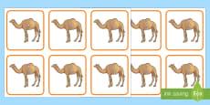 بطاقات الجمل لمكونات العدد 20
