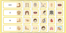 Parts of the Body Topic Words Mandarin Chinese