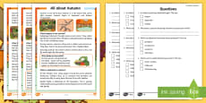 * NEW * All about Autumn Differentiated Comprehension Activity Sheets