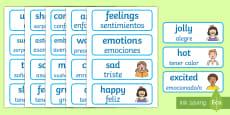 * NEW * Emotions Word Cards English/Spanish