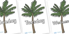Days of the Week on Palm Trees