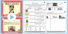 Mary Seacole Significant Individual Lesson Teaching Pack