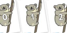 Numbers 0-100 on Koalas