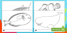 Under the Sea Adventure Colouring Pages