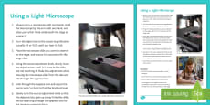 Using a Light Microscope Student Instruction Sheet Print-Out
