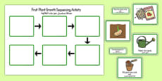 Plant Growth Sequencing Activity Arabic Translation