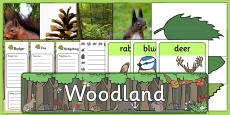 Woodland Role Play Pack