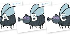 A-Z Alphabet on Flies