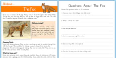 Fox Reading Comprehension