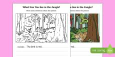 Jungle Writing Stimulus Picture