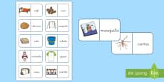 Dominos: La letra C y la letra Qu