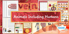 Science: Animals Including Humans Year 6 Unit Additional Resources