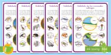Hoja informativa: Hábitats de los animales salvajes