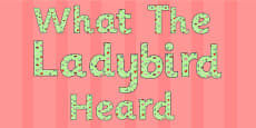 Display Lettering to Support Teaching on What the Ladybird Heard