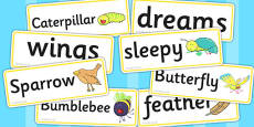 Word Cards to Support Teaching on The Crunching Munching Caterpillar