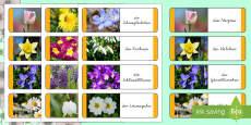 Frühlingsblumen Domino Spiel