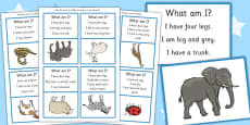 'What Am I?' Guessing Game Cards Animal Themed
