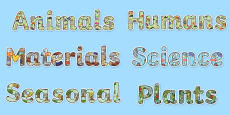 Year 1 Science Display Lettering Resource Pack