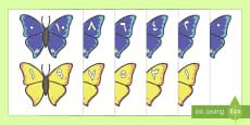 مطابقة بطاقات مكونات العدد 10 (فراشات)