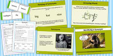 Identifying a Synonym Lesson Teaching Pack