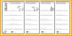Chinese New Year Story Trace the Words Activity Sheets