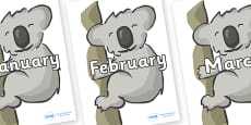 Months of the Year on Koalas