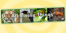 All Living Things Photo Display Banner