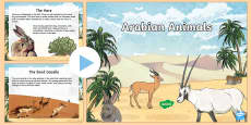 Arabian Animals PowerPoint