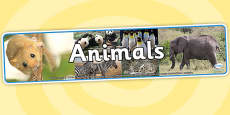 Animals Photo Display Banner