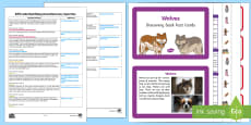 EYFS Little Red Riding Hood Discovery Sack Plan and Resource Pack