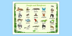 Jungle & Rainforest Word Mat