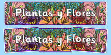 Plants and Flowers Display Banner Spanish