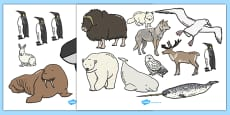 Polar Animals Cut Outs