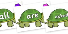 Tricky Words on Tortoise