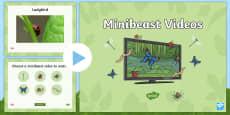 Minibeasts Videos PowerPoint