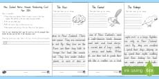 Native New Zealand Animals Handwriting Year 3&4 Activity Sheets