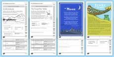 Year 2 Reading Assessment Term 3